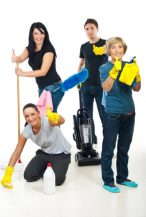 Household Supplies For Mold Removal