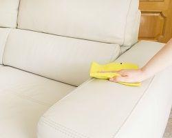 NW7 Upholstery Cleaning Edgware